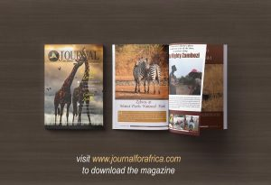 Journal for Africa Magazine A