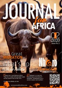 Book Cover: Journal for Africa Magazine Issue 3
